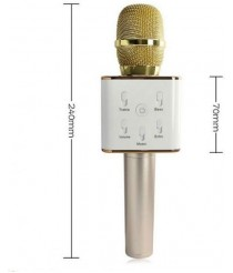 Microphone with Bluetooth and speaker - Gold